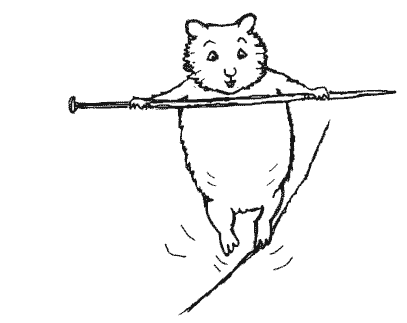 Boo the stunt hamster tries tightrope walking